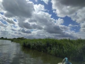 A Day on The Broads with Herbert Woods