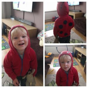 One Ladybird ready to toddle