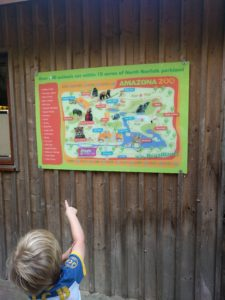 Boy pointing to zoo map