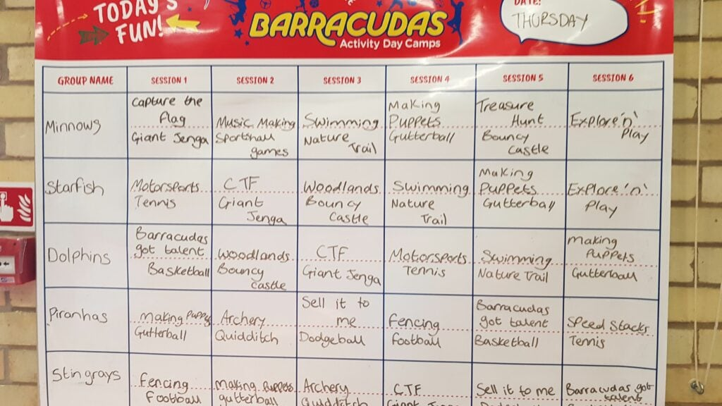 Barracudas activities