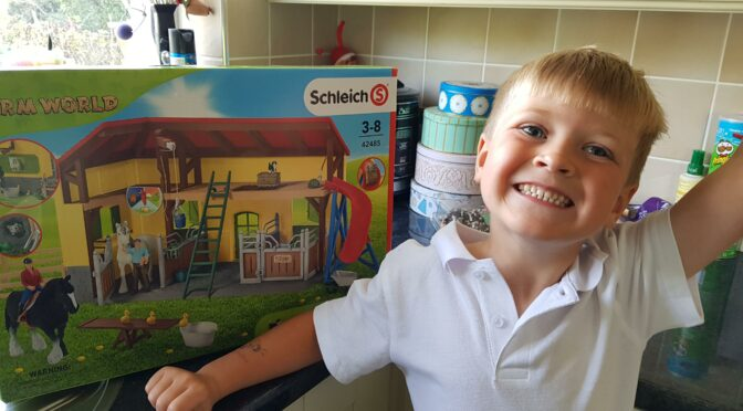 Schleich Farm World Large Horse Stable – Review