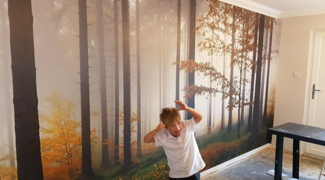 Feature Walls with MuralsWallpaper