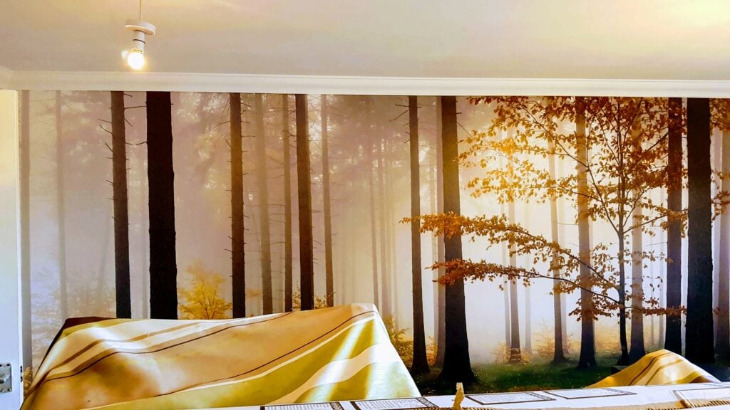 MuralsWallpaper Feature Wall