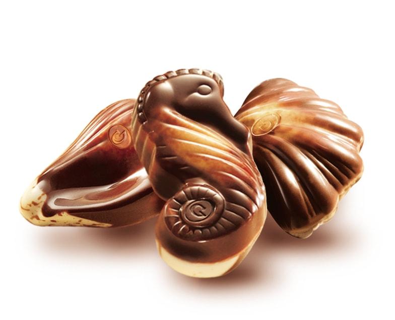 Guylian Sea Shells