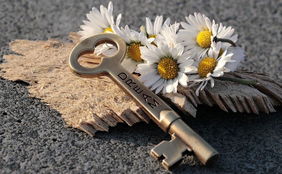 daisys and a key
