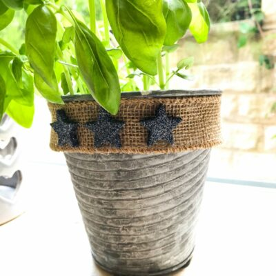 glitter star herb pot