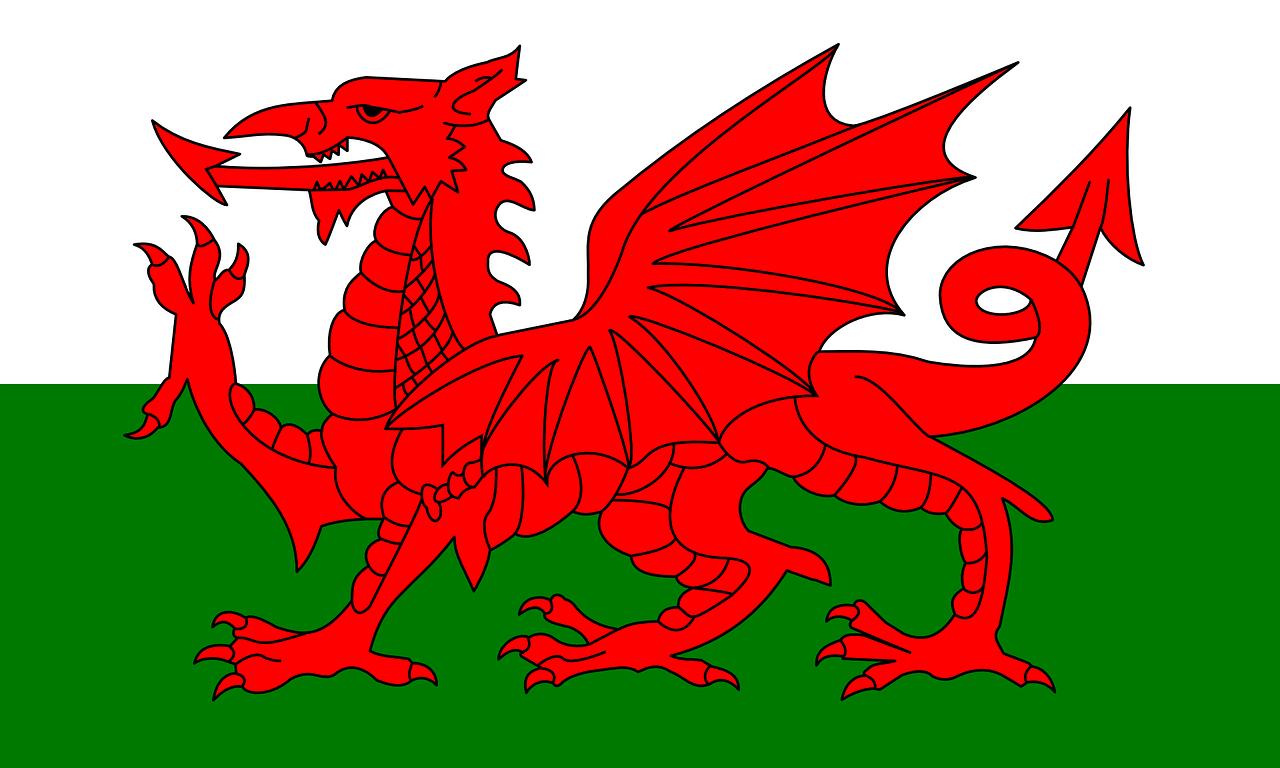 Welsh Translation Service