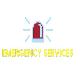 emergency services-uiz