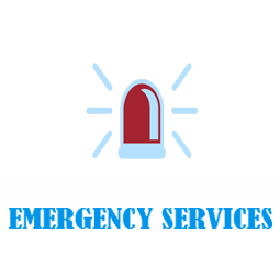 emergency-services-uiz