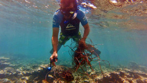 Olive Ridley Project removes a ghost net from a reef in Maldives