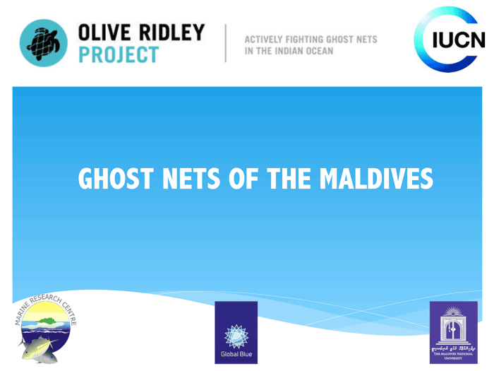 Introducation to Olive Ridley Project. Infographic.