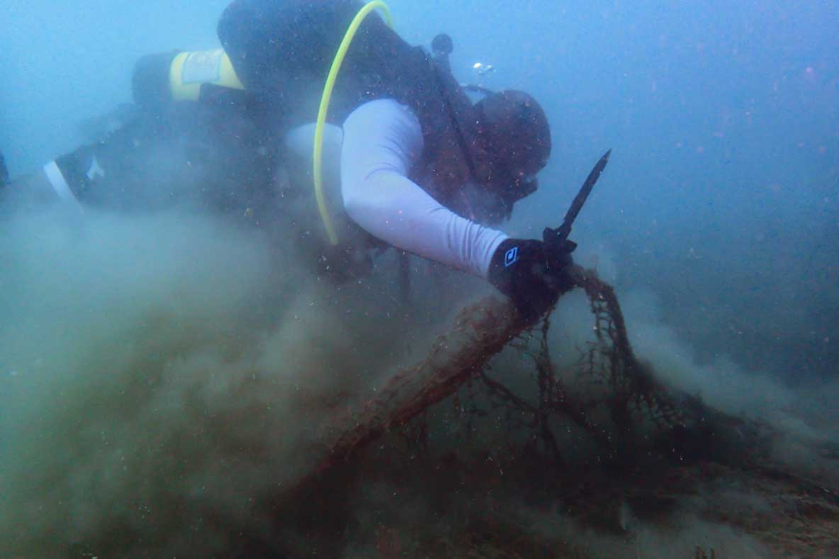 Diver removing ghost net