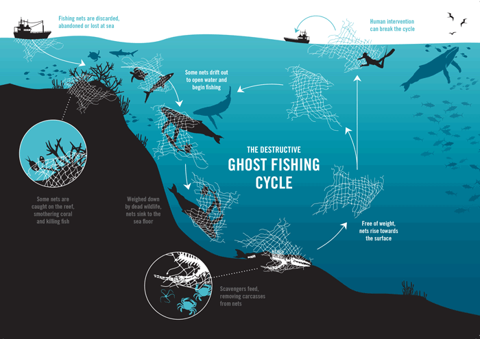 Ghost gear cycle. Infopgrahic.