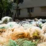 Ghost gear removed from Indian Ocean