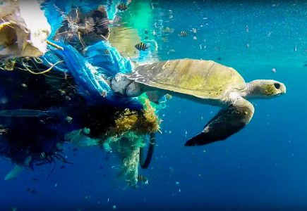 Turning The Tide On Ghost Gear