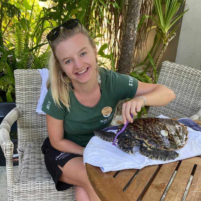 Laura Whiteley with turtle patient Reethi, a juvenile hawksbill turtle, who was successfully rehabilitated and released back into the ocean.