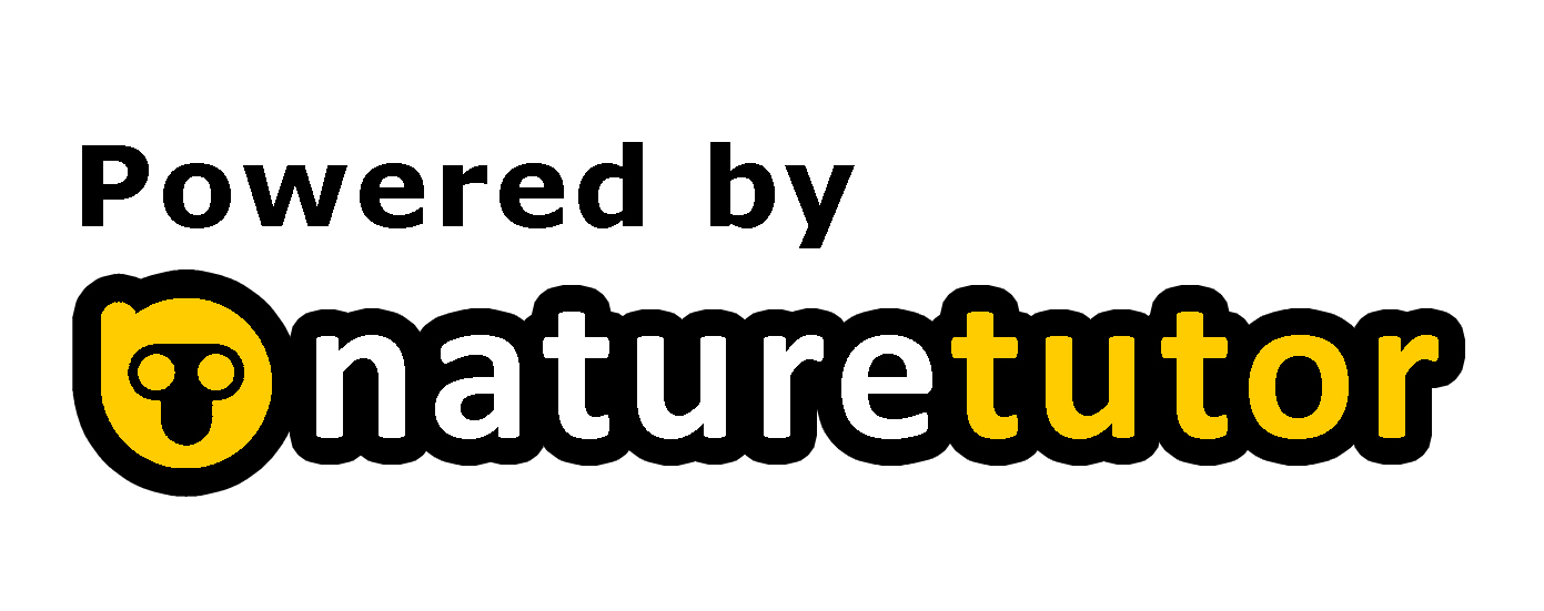 Nature Tutor by Architect Umair Zia