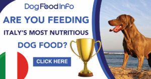 best dog food in Rome Italy expats wanted in rome