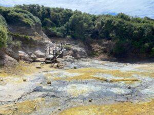 Saturday June 12th - Group Hiking Day (lago Albano/Nemi) 9