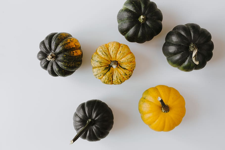 Eat Seasonally: Fall Edition