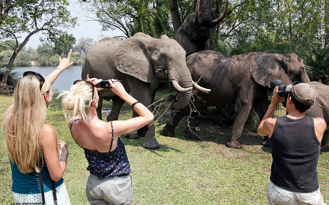 Travel Tips For Visitors To Zambia