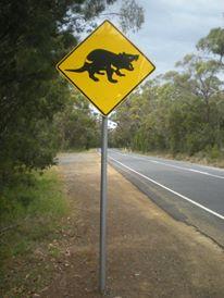 Tasmania parte 1