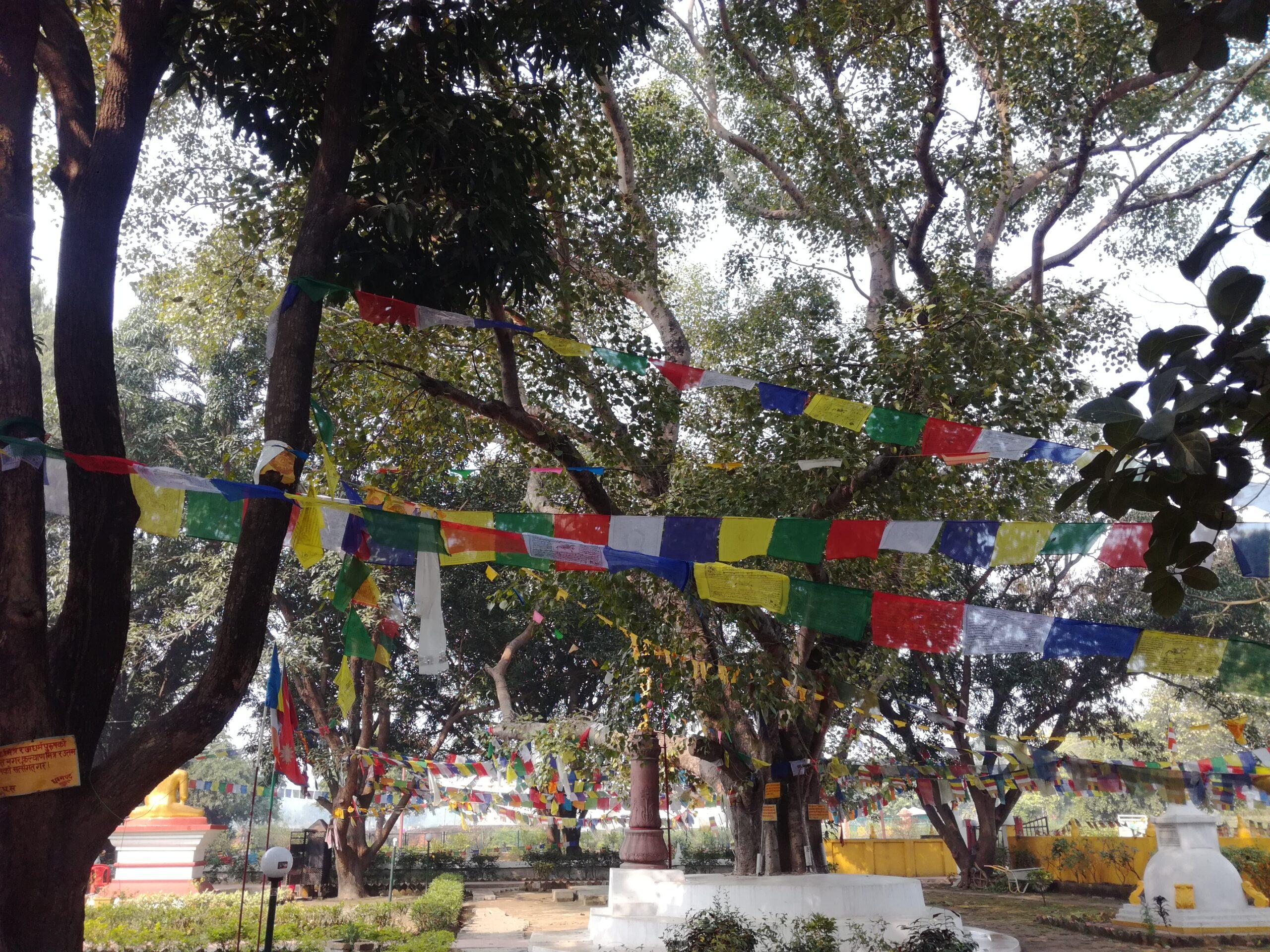 Bandiere tibetane