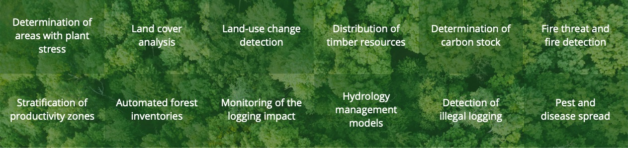 Precision Forestry Applications