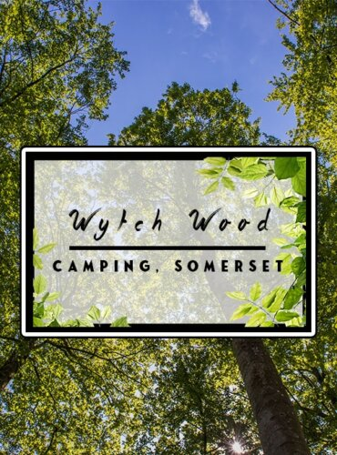 Wytch Wood Campsite at Blackmore Farm, Somerset Review