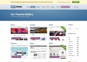Best Wordpress Premium Theme Part 2-woothemes collection