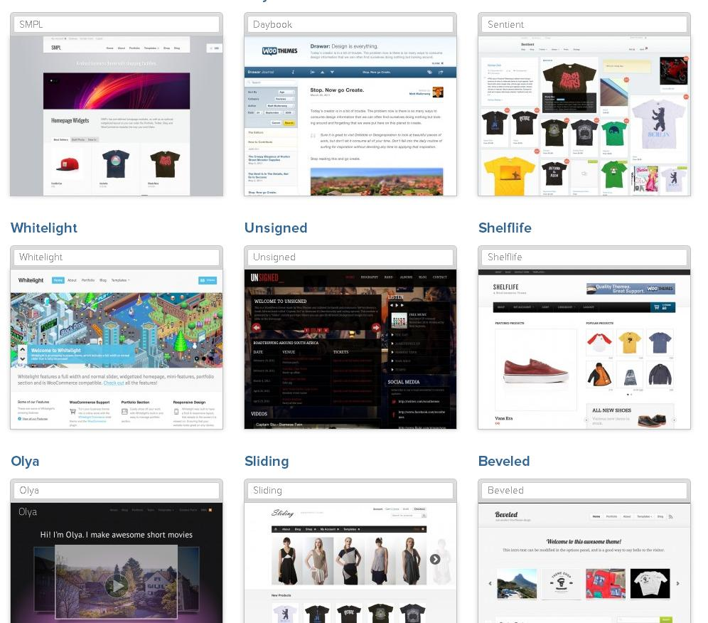 woothemes ecommerce themes