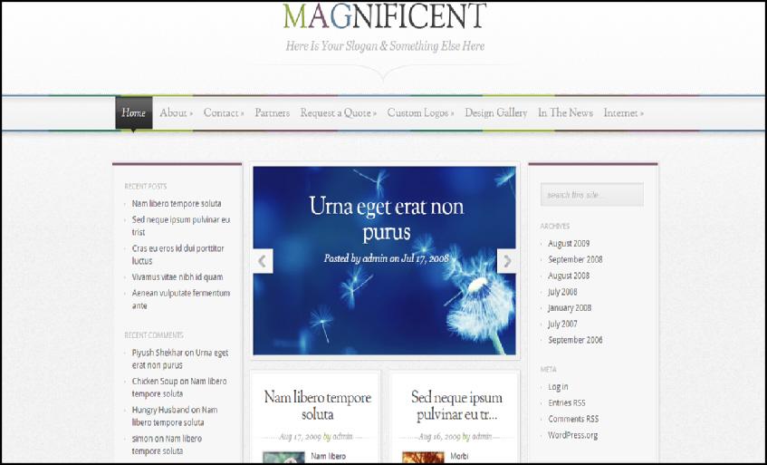magnificient wordpress theme