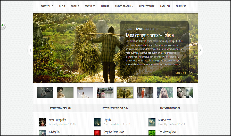 Aggregate best wordpress seo themes