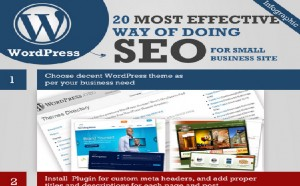 wordpress seo infographic