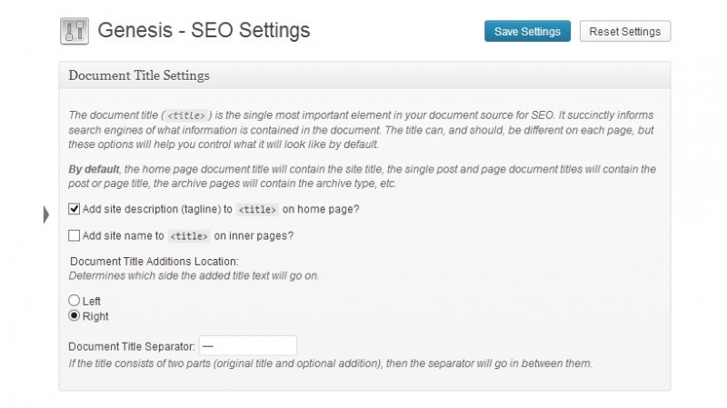 genesis theme review-seo options