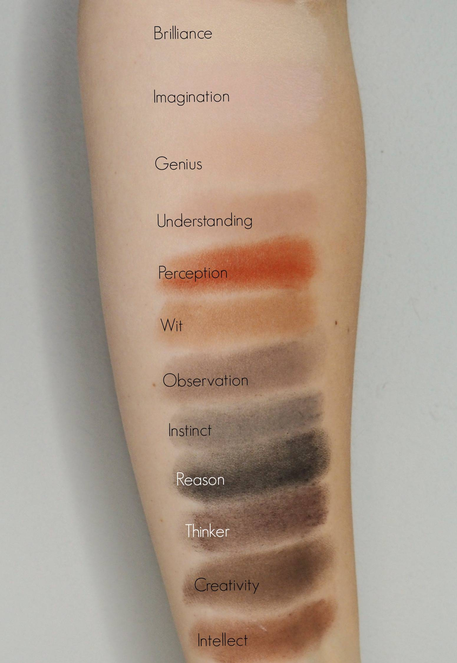 Stila Eyes Are The Window Palette - Mind Swatches