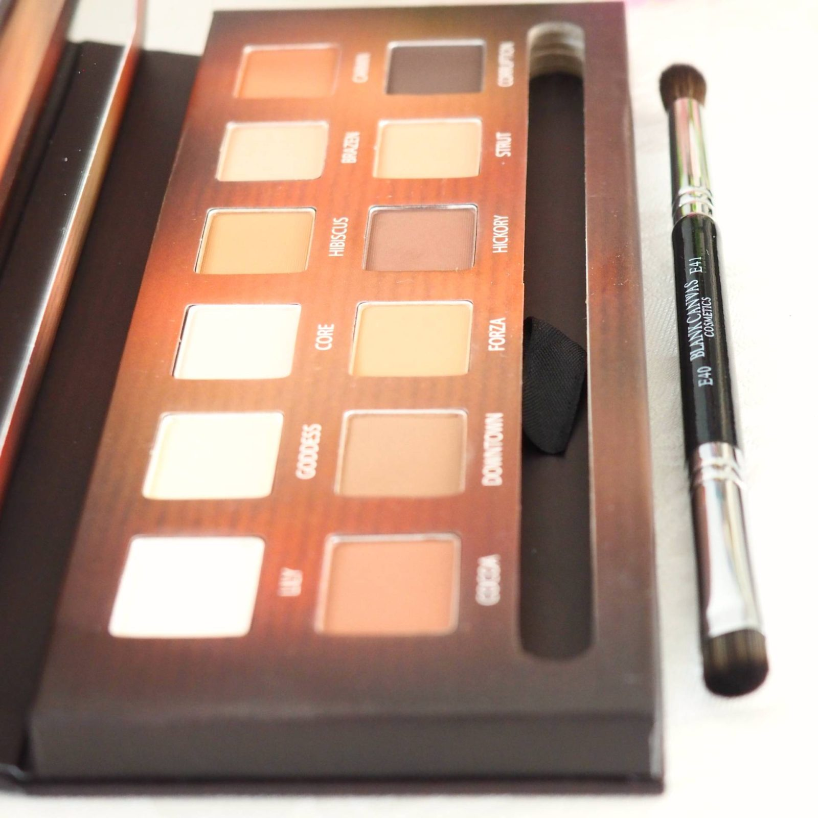Blank Canvas Cosmetics Master Series Eye Palette One