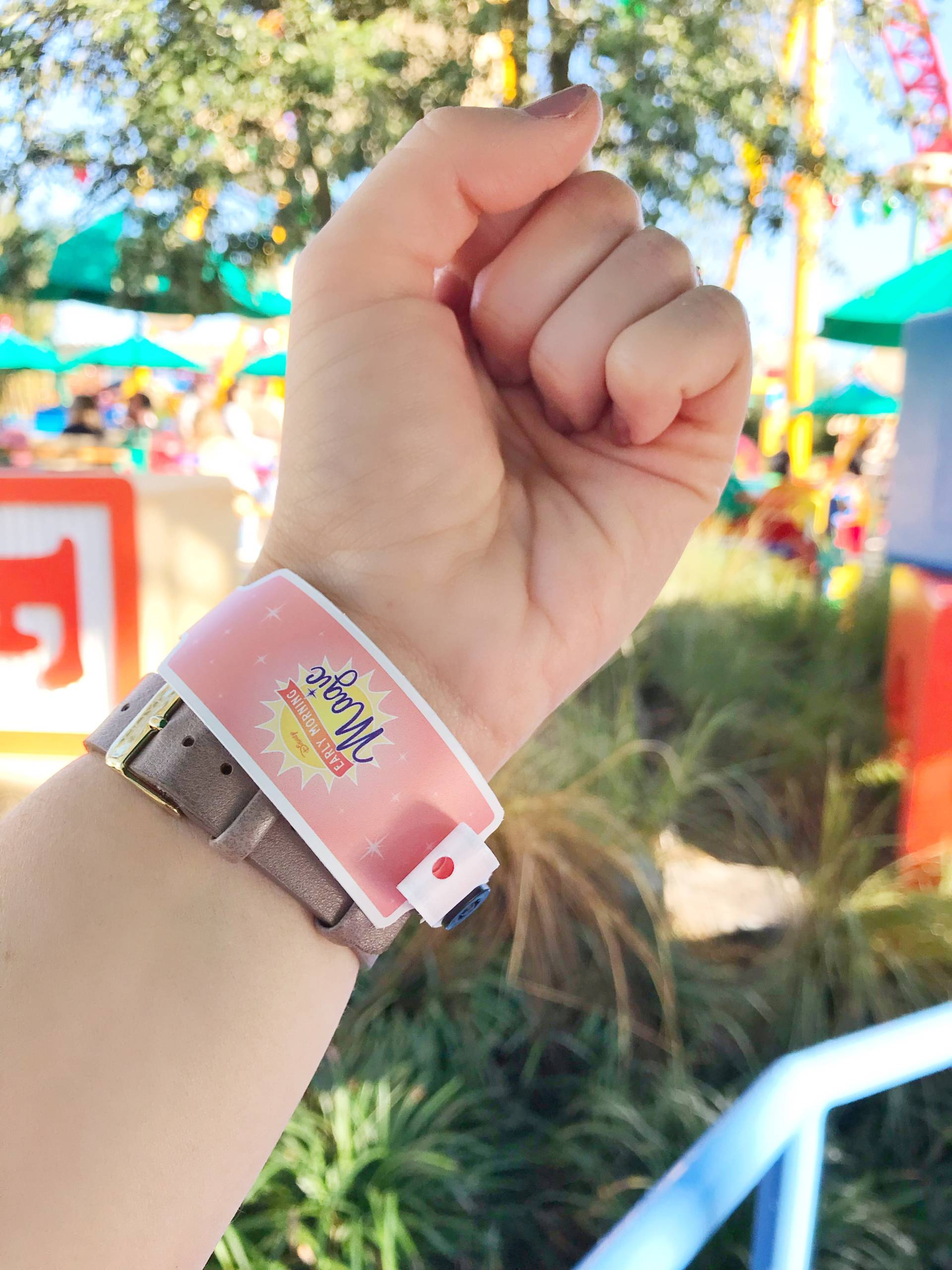 Early Morning Magic Toy Story Land Review