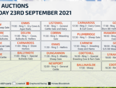 Online Auctions – Thursday Calendar 23/09/2021