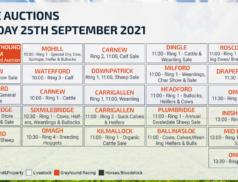 Online Auctions – Saturday Calendar 25/09/2021