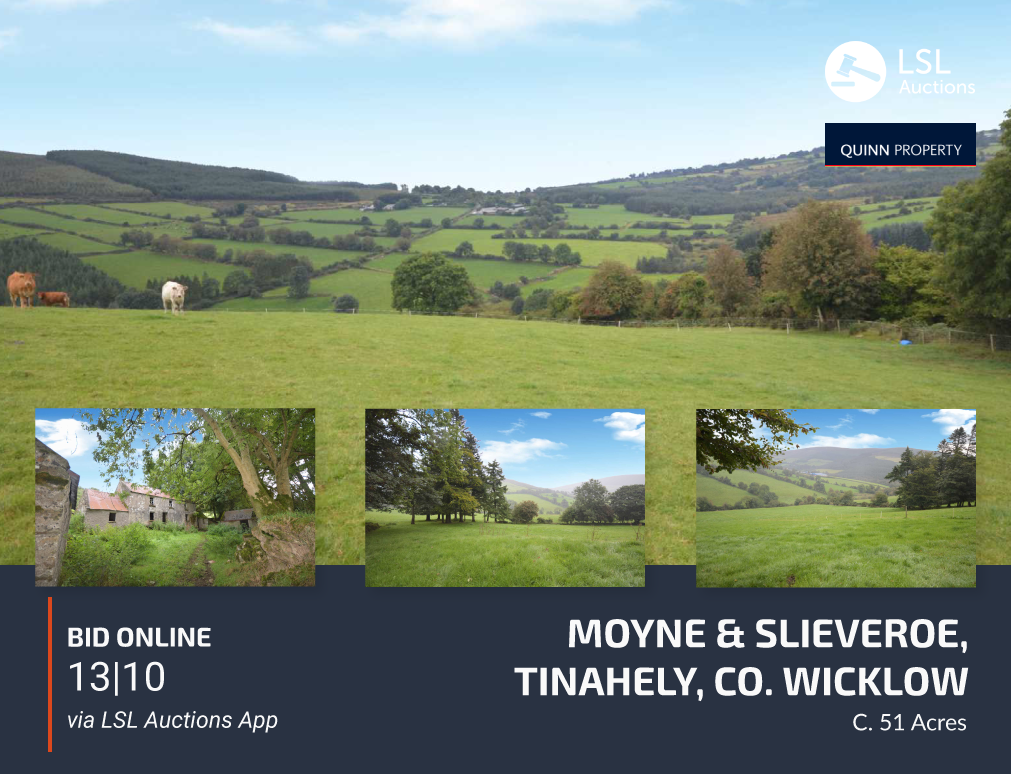 Quinn Property - Moyne & Slieveroe, Tinahely, Co. Wicklow