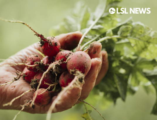 First official EU Organic Day launched