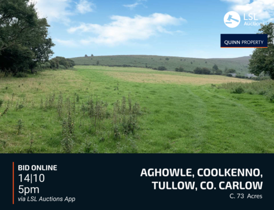 Quinn Property - Aghowle, Coolkenno, Tullow, Co. Carlow