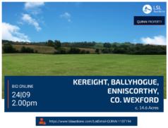Quinn Property - Holding at Kereight, Ballyhogue, Enniscorthy, Co.Wexford