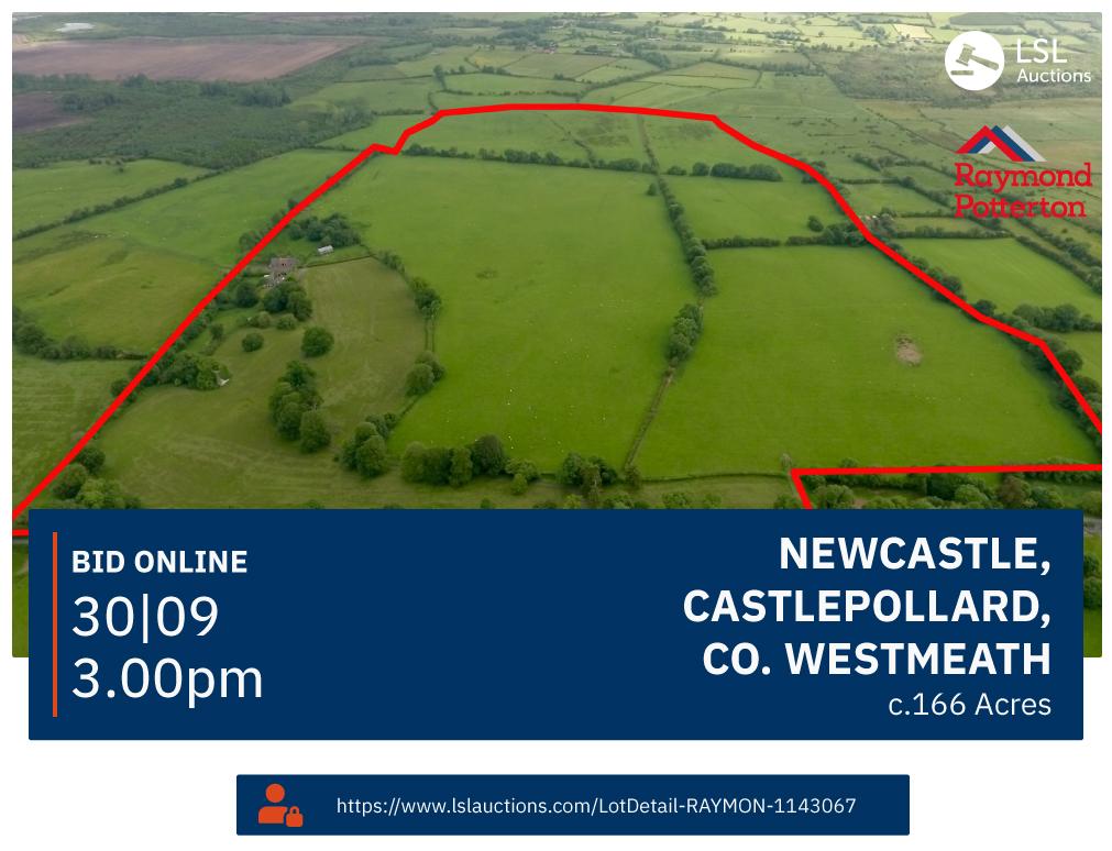 Newcastle, Castlepollard, Co. Westmeath
