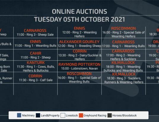 Online Auctions – Tuesday Calendar 05/10/2021