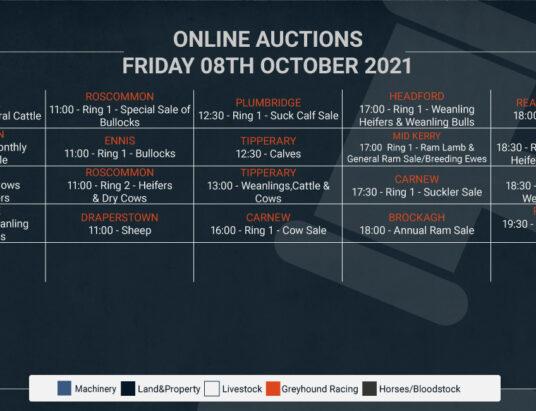 Online Auctions – Friday's Calendar 08/10/2021