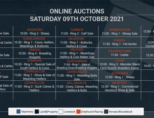 Online Auctions – Saturday's Calendar 09/10/2021