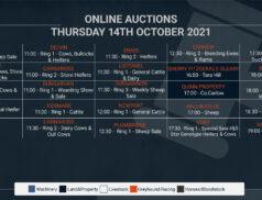 Online Auctions – Thursday's Calendar 14/10/2021