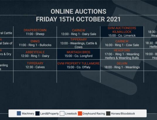 Online Auctions – Friday's Calendar 15/10/2021